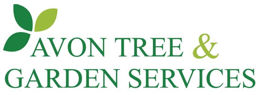 Avon Tree and Garden Services Logo